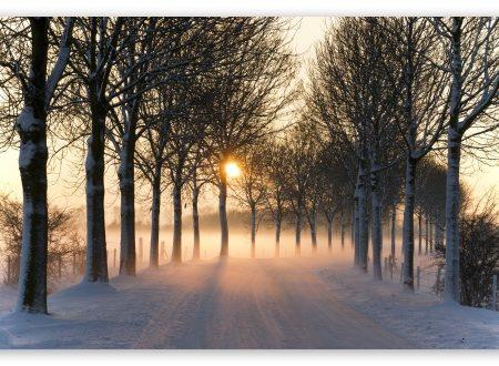 La importància de prendre el sol a l'hivern